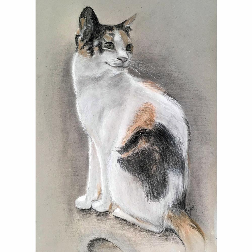gaveide til ham og hende - katte tegning portraet