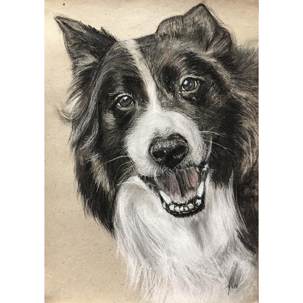 portrættegning hunde, katte, dyr portrættegner unik gaveide julegave