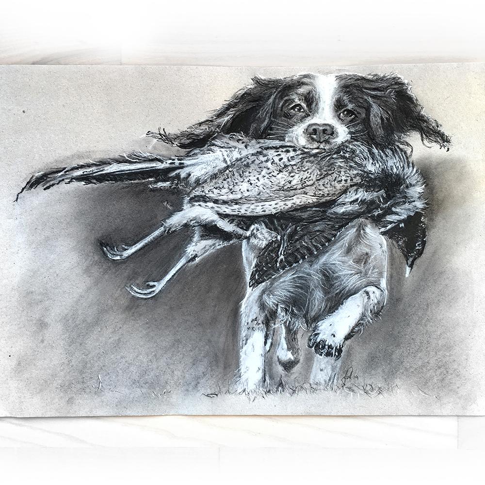 unik gaveide portrættegning af hund, kat, kæledyr portrættegner