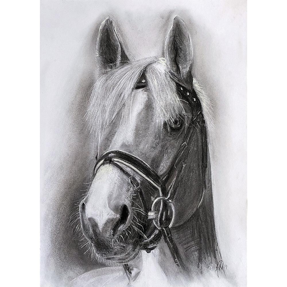 hesteportraet_hestetegning_unik_gaveide_portraettegning_portraettegner_hestepigen_hestefolket_julegave