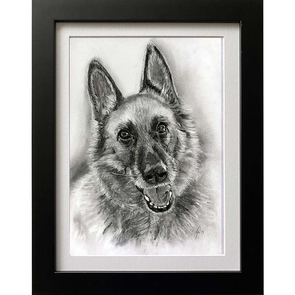 hundeportraet_portraettegning_julegaveide_unik_gave_schaefertegning_portraettegner_jannedamborg