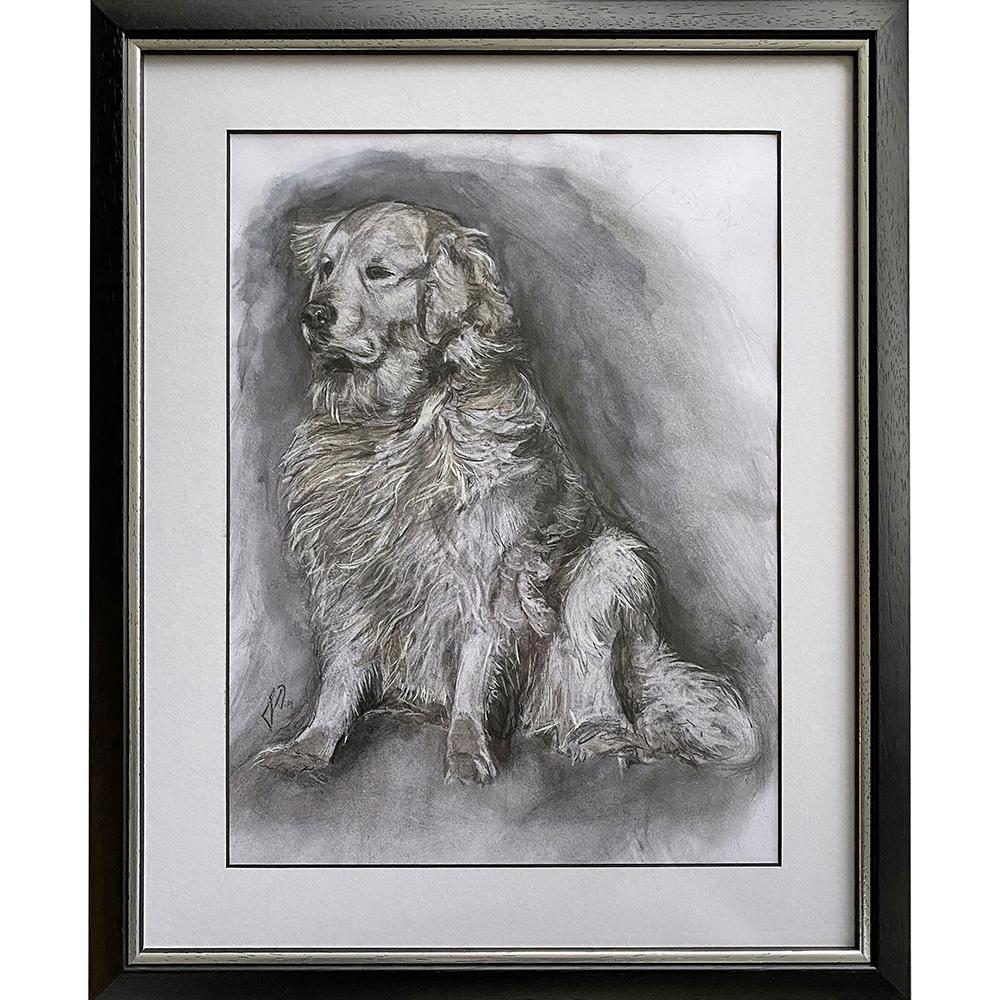 hundeportraet_portraettegning_unik_gaveide_dog_portrait_drawing_golden_retriever