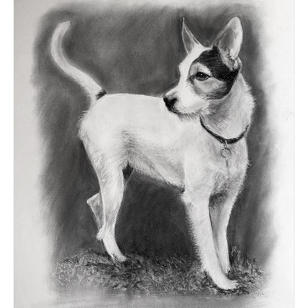 portraettegning-hundportraet-julegave-hundetegning-unik-gaveide